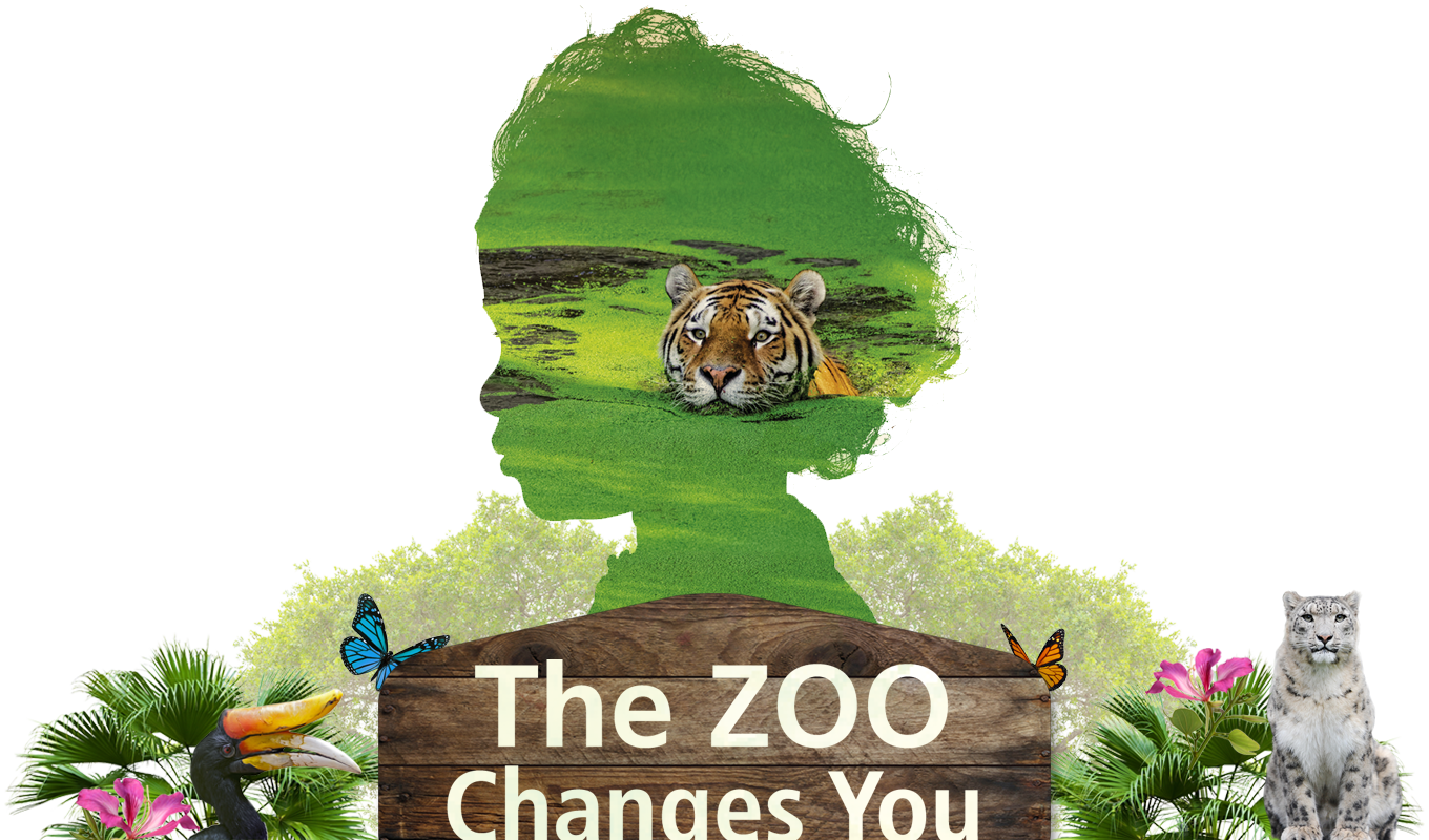The Zoo Changes You
